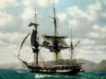 Charles Darwins Ship the beagle artwork