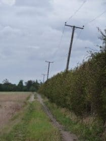 Leaning telegraph poles