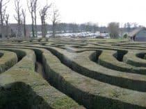 Longleat Maze Natural Navigation
