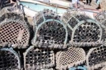 Lulworth cove lobster pots