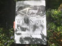 Wild Signs and Star Paths Book on the grass